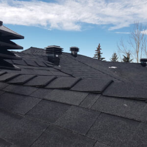 Four black cupola vents on a roof.
