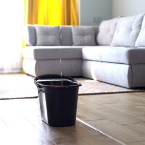 bucket catches water leaking roof