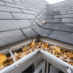 eavestroughs that are filled with leaves and debris
